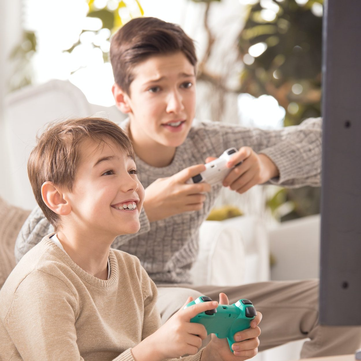 Brothers playing on playstation