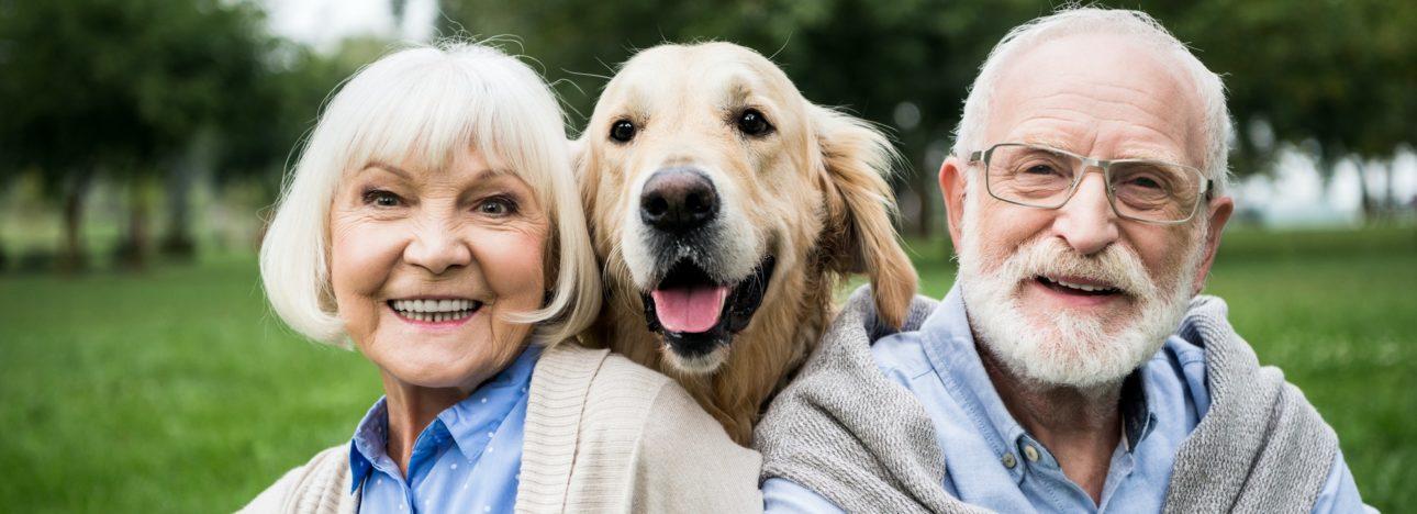 happy senior couple with adorable golden retriever dog in park
