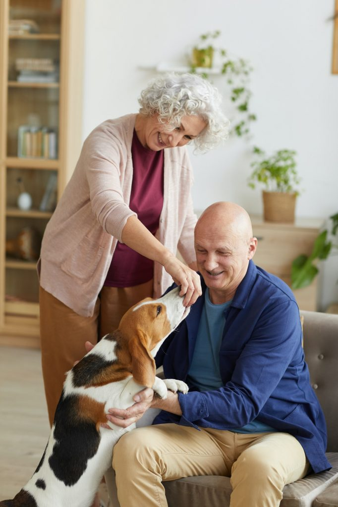 Senior Couple Playing with Dog at Home