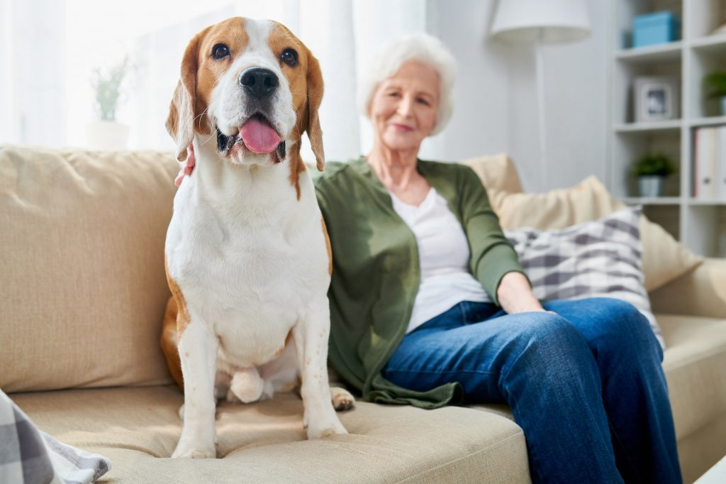 Senior woman and her dog at home