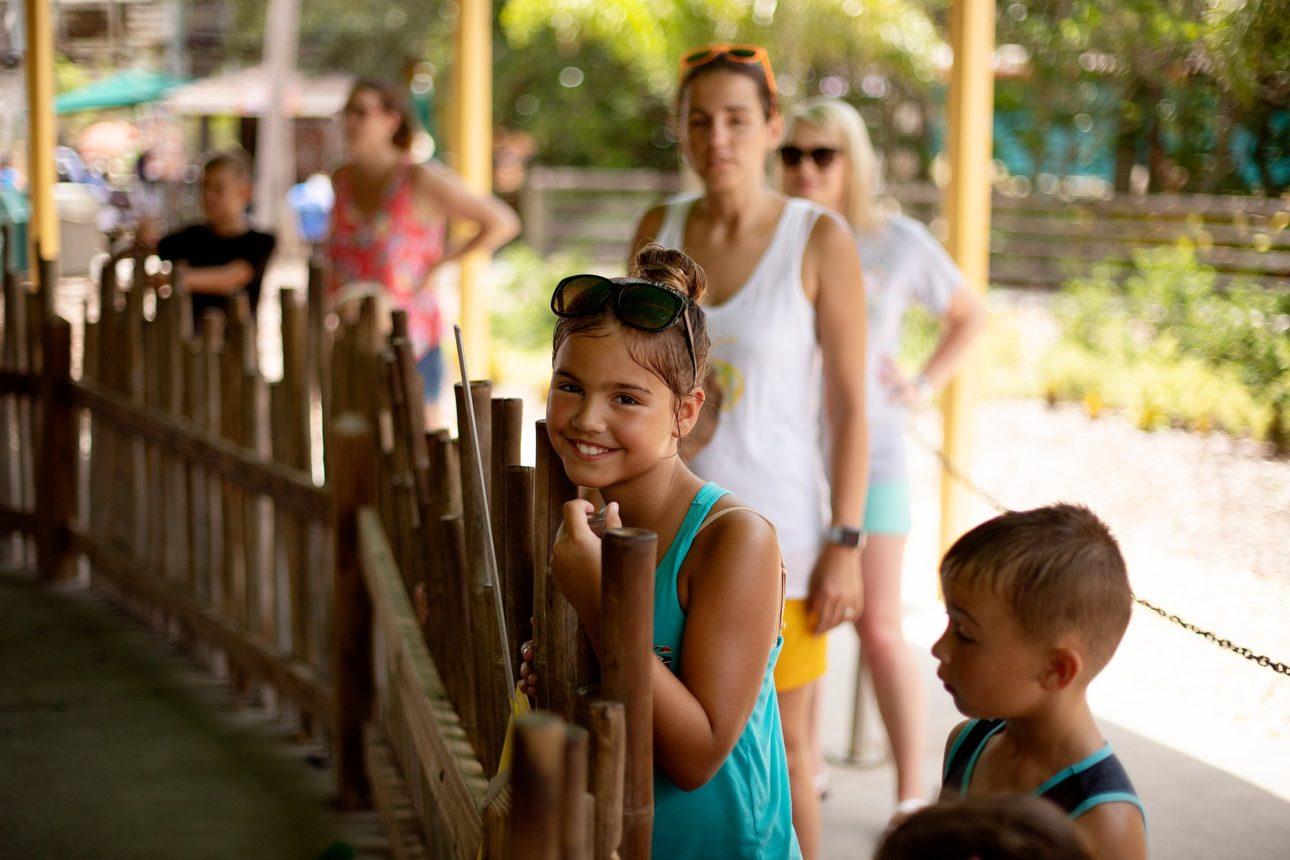 Waiting at the zoo